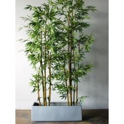 Variedad en planta artificial