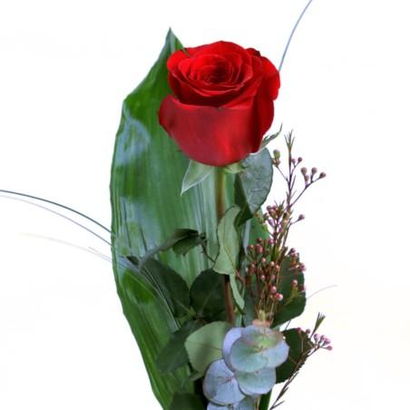 Una rosa roja Pensando en ti