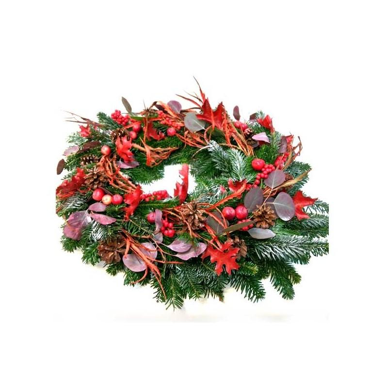 """Planta de Nadal""""AGOTAT"""""""
