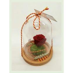 Rosa de Sant Jordi liofilitzada