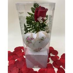 Rosa roja dulce